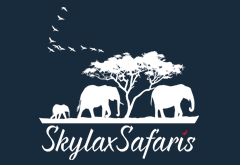 Skylax Tours and Safaris