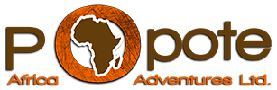 Popote Africa