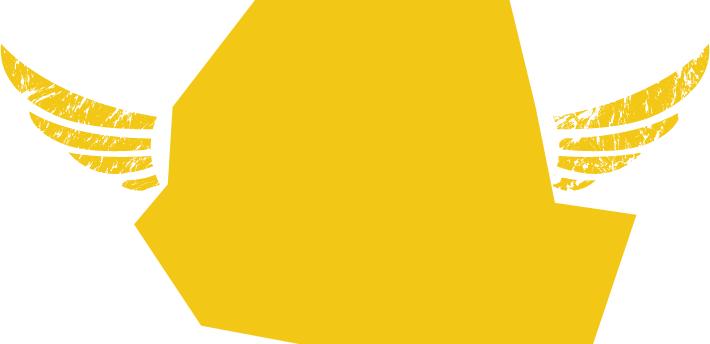 Wings Kenya